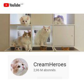 Traduction EN/FR (vidéos) – CreamHeroes
